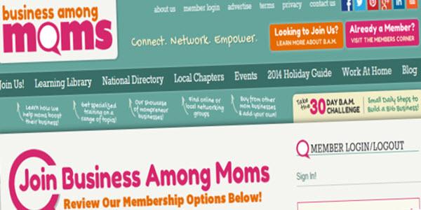 Business-Among-Moms